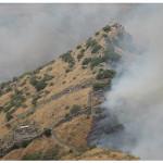 """צה""""ל העלה באש את שמורת גמלא בצפון"""