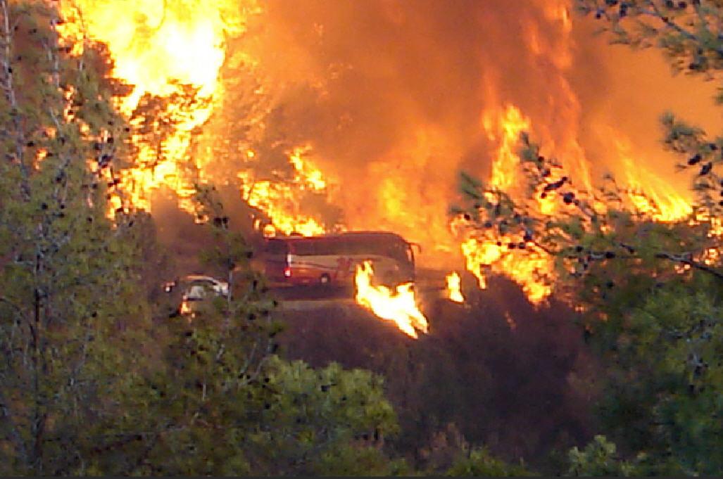 השריפה בהר הכרמל